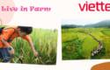 live-in-farm-san-choi-moi-yes-nghia-cho-tre-em-viettel-privilege-1